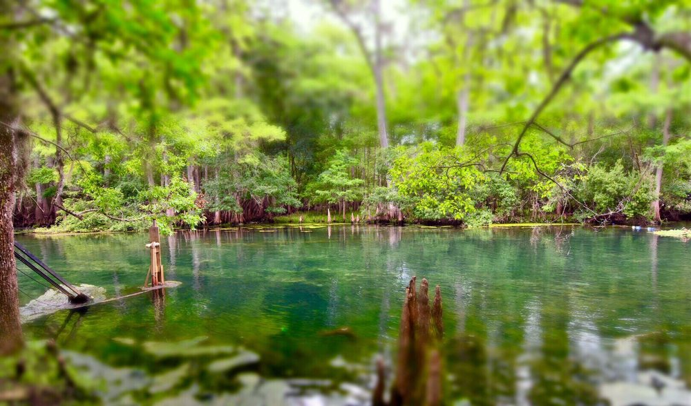 Manatee Springs State Park: 11650 NW 115th St, Chiefland, FL
