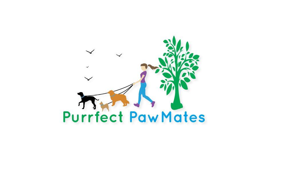Purrfect PawMates: Bogota, NJ