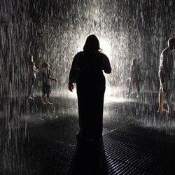 Rain Room - LACMA - CLOSED - 296 Photos & 123 Reviews - Art ...
