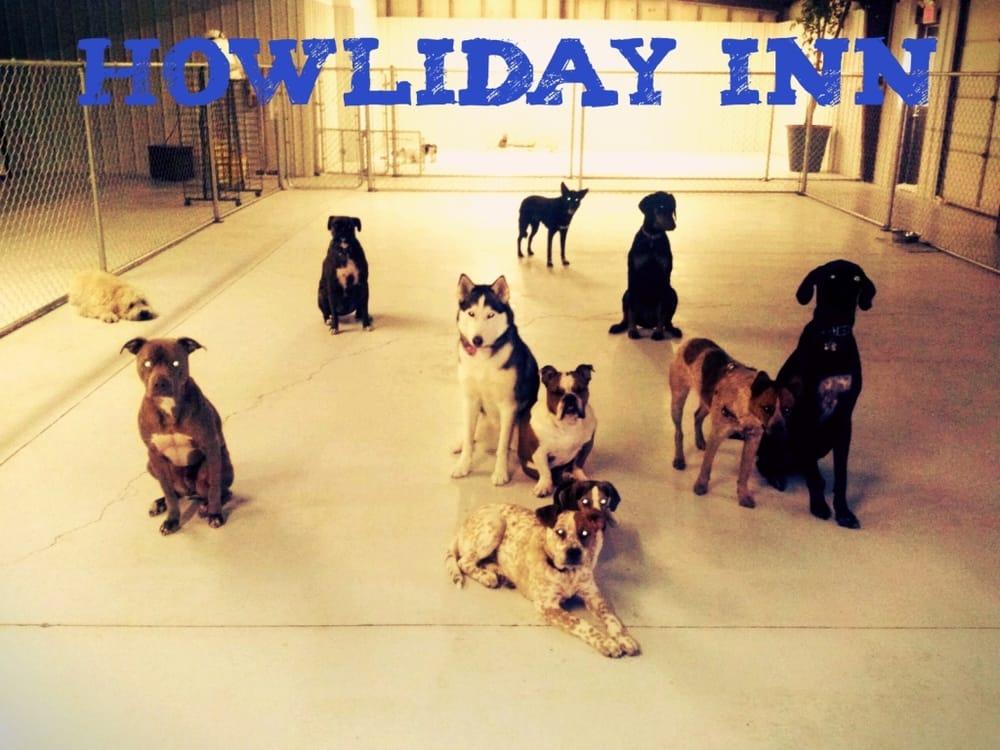 Howliday Inn Pet Resort: 4939 E Hwy 60, Rogersville, MO