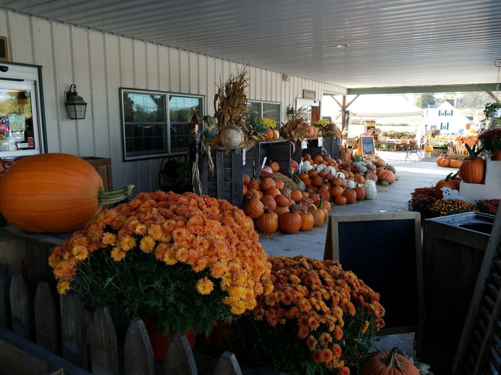 Hollabaugh Bros Fruit Farm & Market: 545 Carlisle Rd, Biglerville, PA