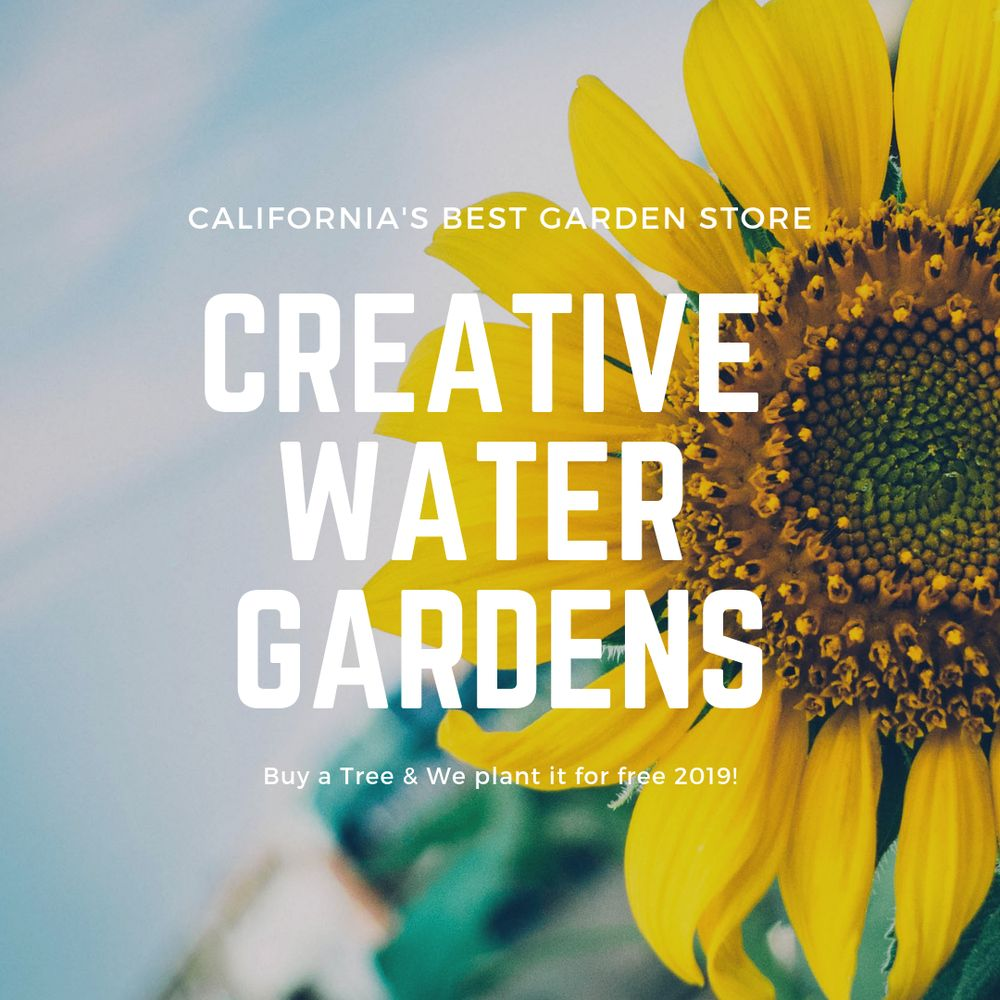 Creative Water Gardens: 19777 McHenry Ave, Escalon, CA