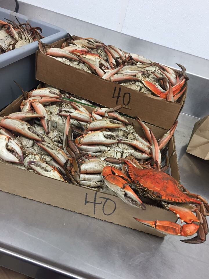 Martin Brothers Seafood Co: 133 Westbank Expy, Westwego, LA