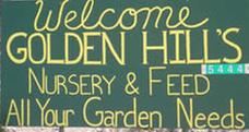 Golden Hill's Nursery: 5444 E Golden Hill Rd, Globe, AZ