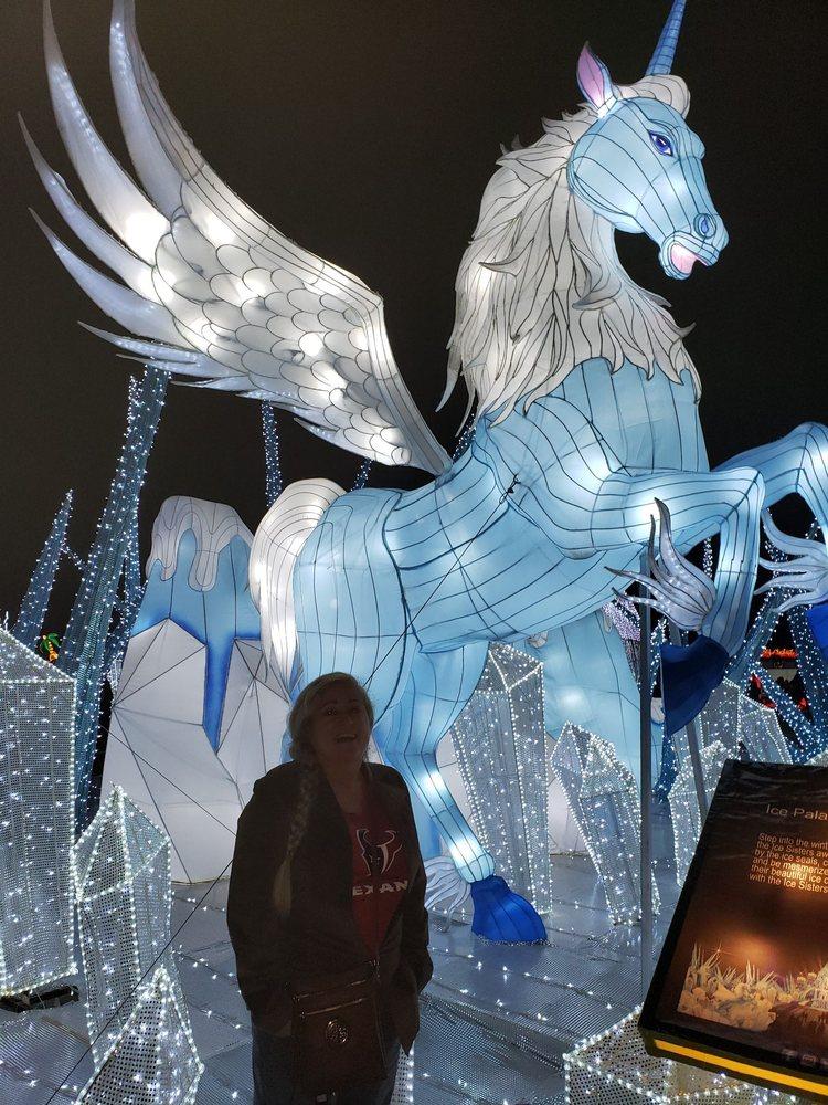 Social Spots from Magical Winter Lights