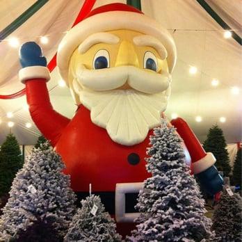 Photo of Pinery Christmas Trees - Del Mar, CA, United States. Easter Bunny - Pinery Christmas Trees - 10 Photos & 14 Reviews - Christmas Trees