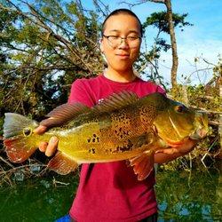 Photo Of BASS Online Fishing