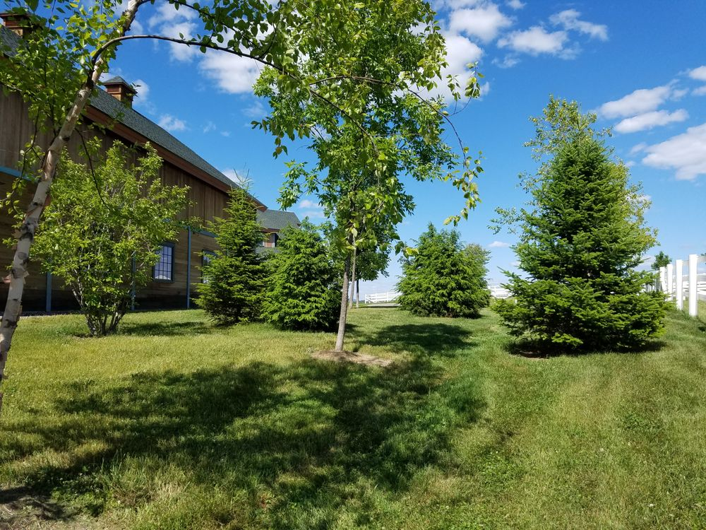 Norpine Landscape: 153 Salem Rd, Kingfield, ME