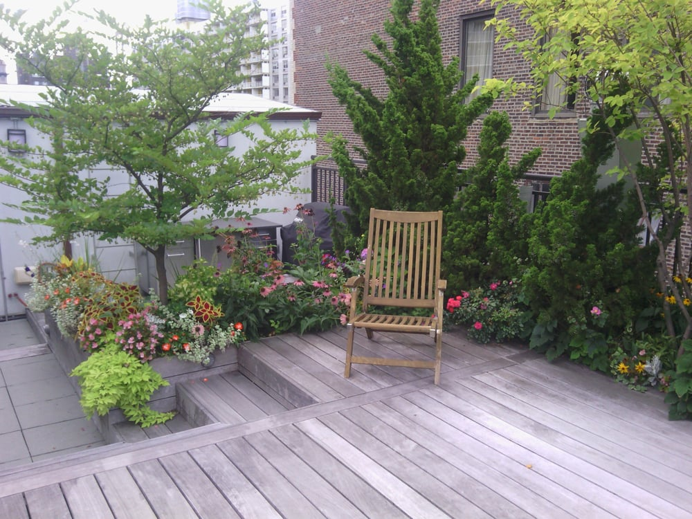 Roof deck designed by nina trees shrubs flowers drip for New landscape design
