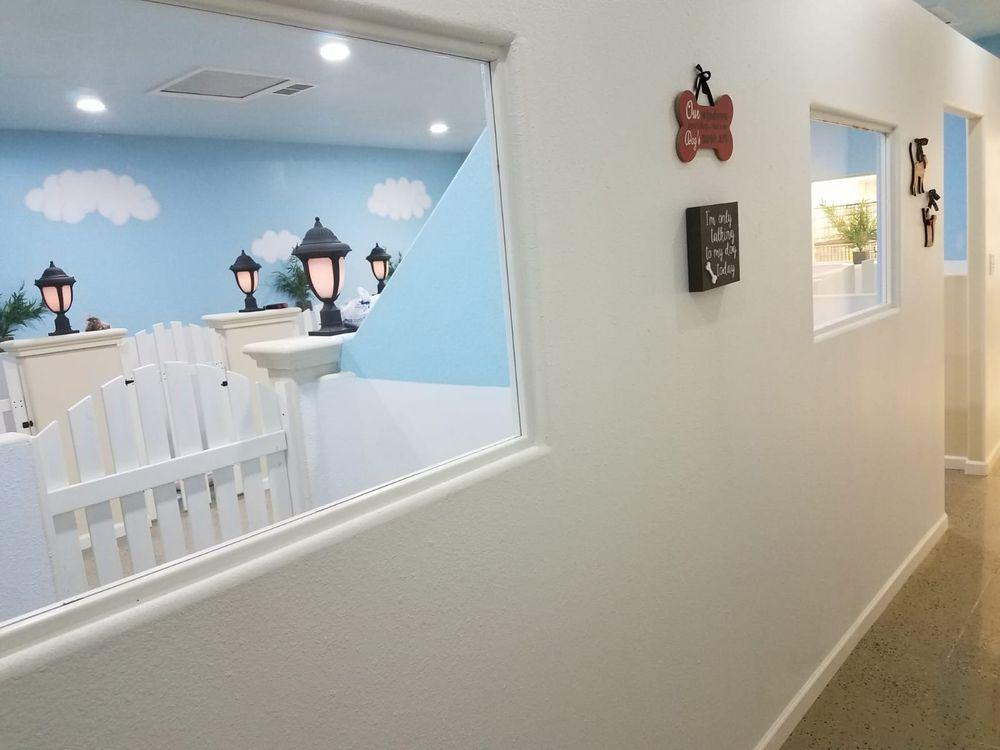Flash Pet Salon & Hotel: 600 N Shary Rd, Mission, TX