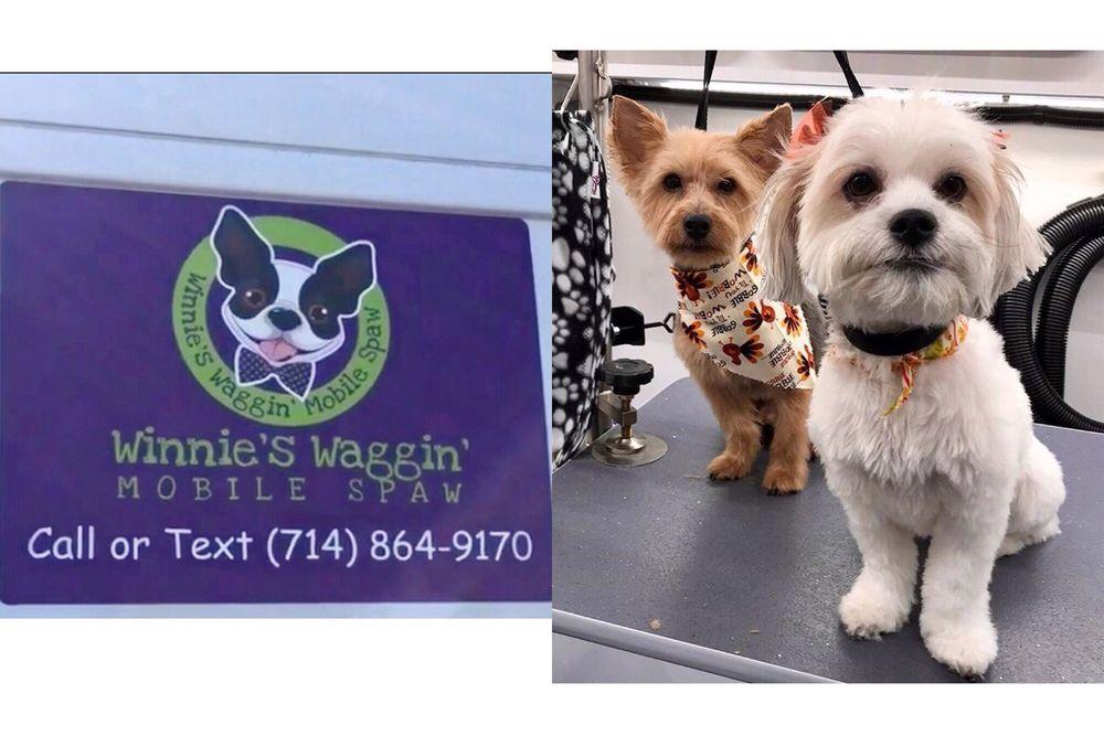 Winnie's Waggin' Mobile Spaw: Orange, CA