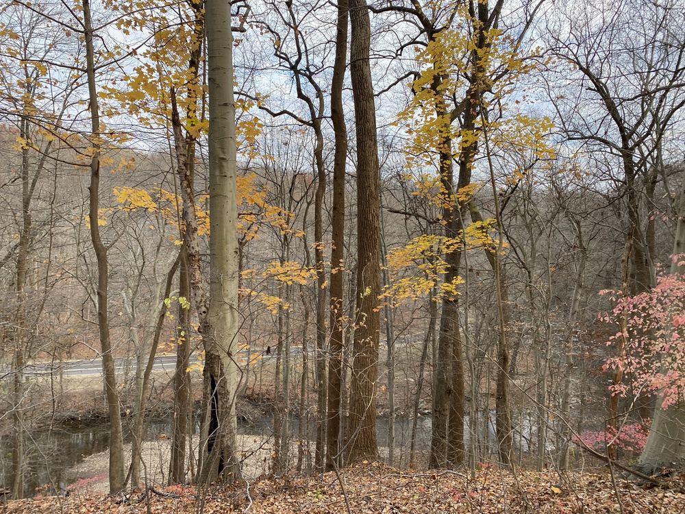 Social Spots from Rock Creek Park