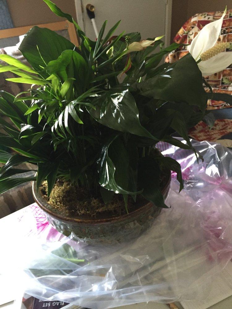 Flowerama - Des Moines: 3310 SE 14th St, Des Moines, IA