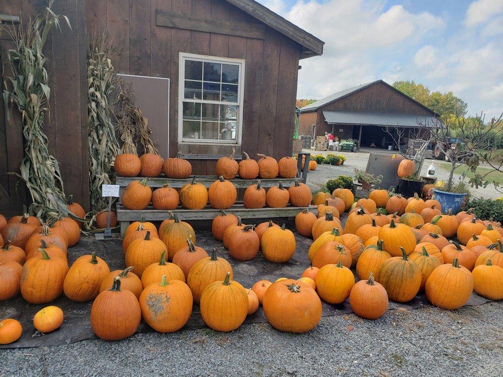 Kristy's Barn: 2385 Brookview Rd, Castleton On Hudson, NY