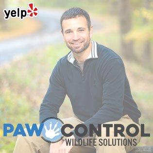 Paw Control Wildlife Solutions: Hiawatha, IA