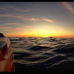 safari town surf shop 20 photos 10 reviews rafting kayaking