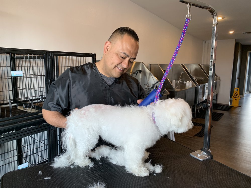 Puppy Place Grooming