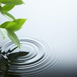 organic healing
