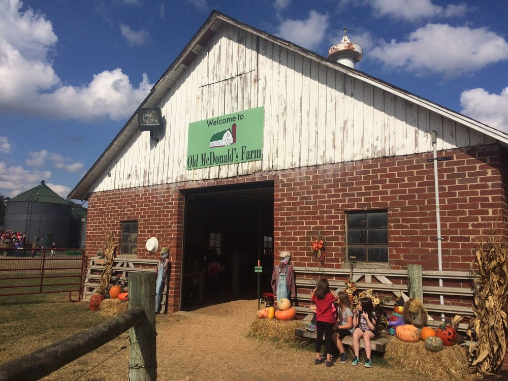 Old McDonald's Farm: 16705 Coulterville Rd, Sale Creek, TN