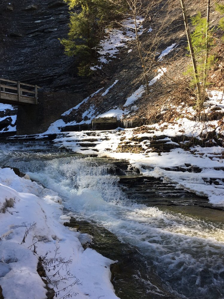 Stony Brook State Park: 10820 State Rte 36, Dansville, NY