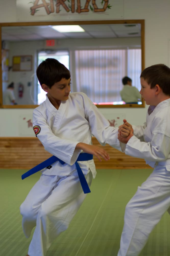 Aikido Academy of Martial Arts: 4120 US Highway 19, New Port Richey, FL
