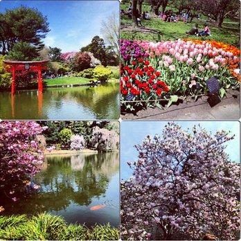Brooklyn Botanic Garden 2112 Photos 580 Reviews Botanical Gardens 990 Washington Ave