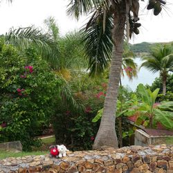 Photo Of Carib Beach Resort Saint Thomas Virgin Islands U S