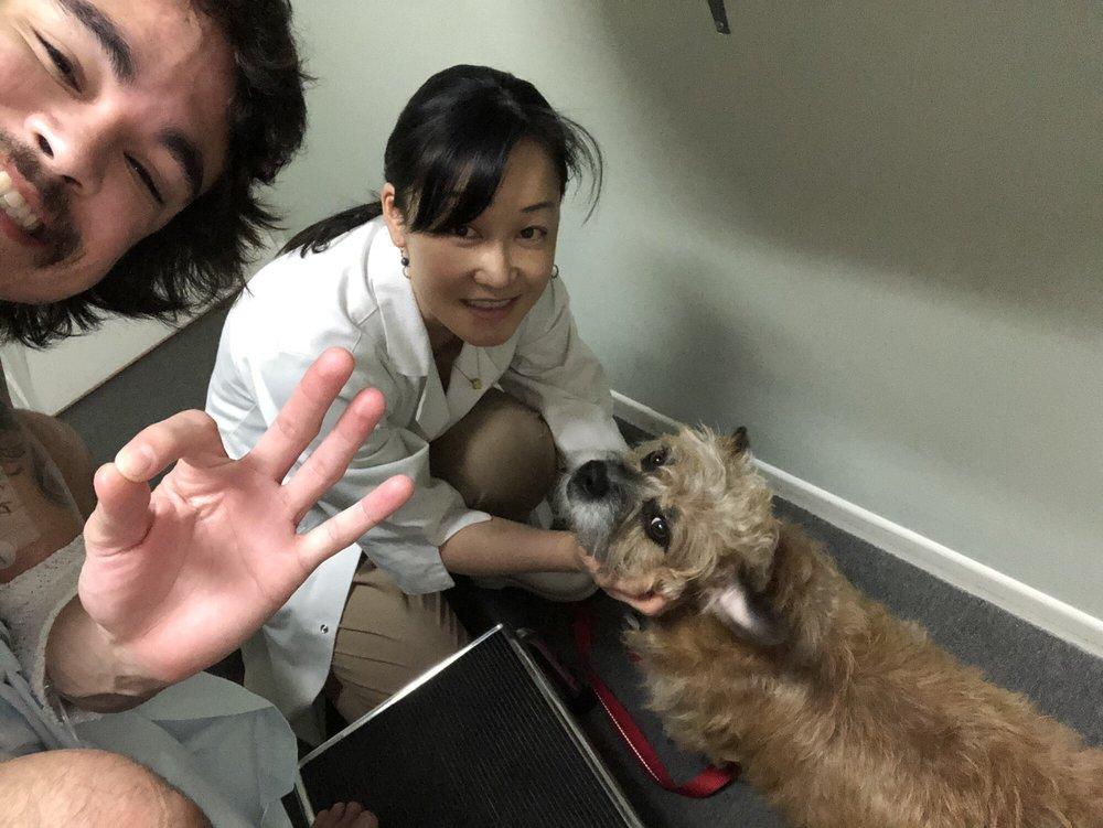Koyama Chiropractic & Acupuncture Clinic