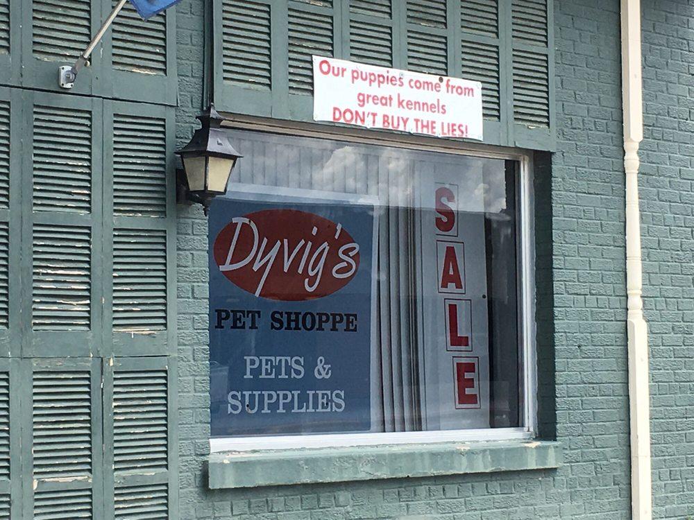 Dyvigs Pet Shoppe: 412 Burnett Ave, Ames, IA