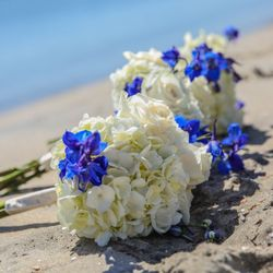 Photo Of Petals By The Beach San Go Ca United States