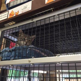 Pet Food Express Redwood City Ca