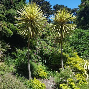 Photo Of San Francisco Botanical Garden   San Francisco, CA, United States