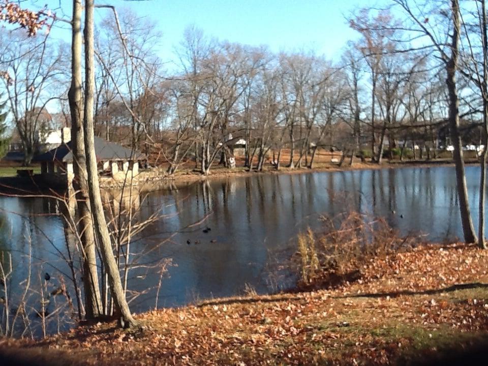 Tilley Pond Park: 38 West Ave, Darien, CT