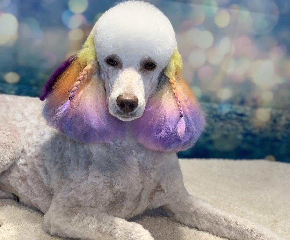 Shear Beauty Dog Spa: 401 N Lakeview Dr, Waco, TX