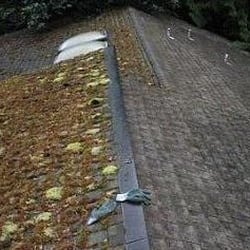 Photo Of USA Gutter Window U0026 Roof Cleaning   Portland, OR, United States ...