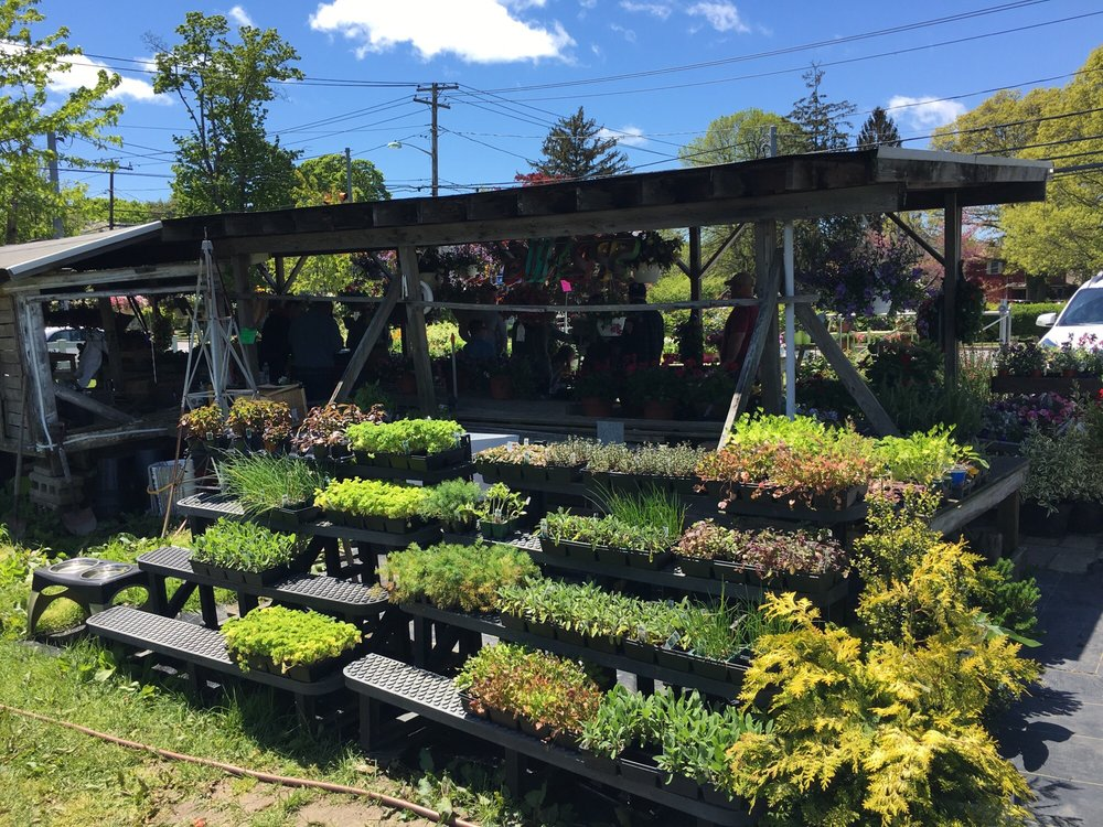 The Farm on Lakeland: 109 Lakeland Ave, Sayville, NY