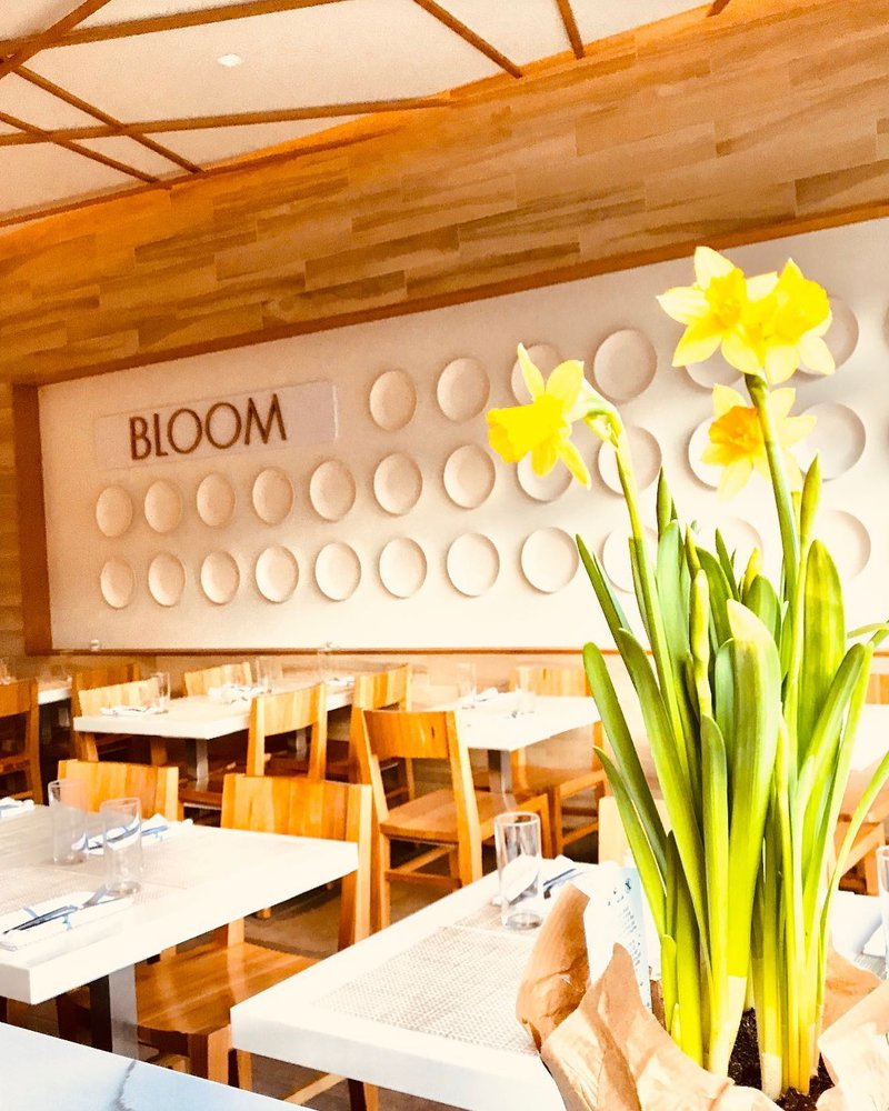 Food from Bloom