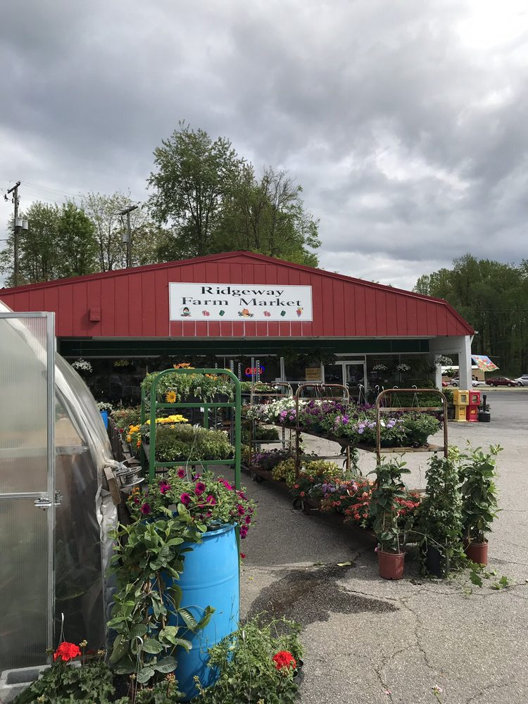 Ridgeway Farm Market: 6697 Greensboro Rd, Ridgeway, VA