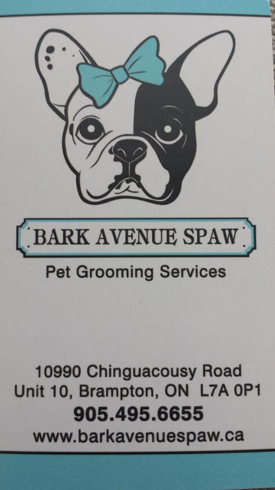 Bark avenue spaw pet groomers 10990 chinguacousy road brampton bark avenue spaw pet groomers 10990 chinguacousy road brampton on phone number yelp solutioingenieria Image collections