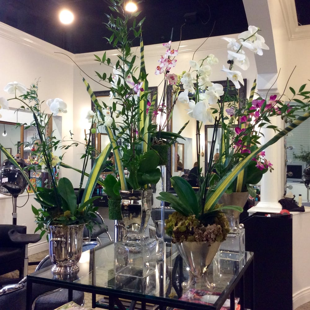 Floral arrangements are delivered weekly to the salon yelp for Abaka salon coral gables