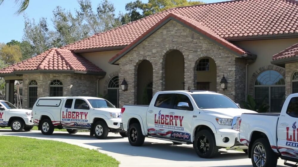 Liberty Pest Management: 19619 Michigan Ave, Odessa, FL