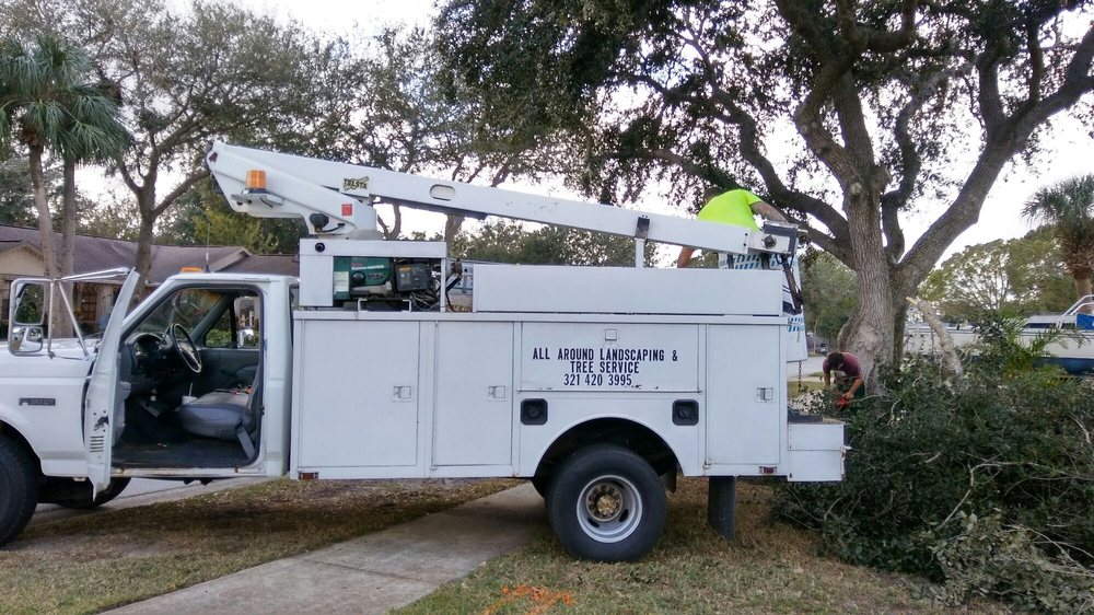 All Around Landscaping and Tree Service: Cocoa, FL