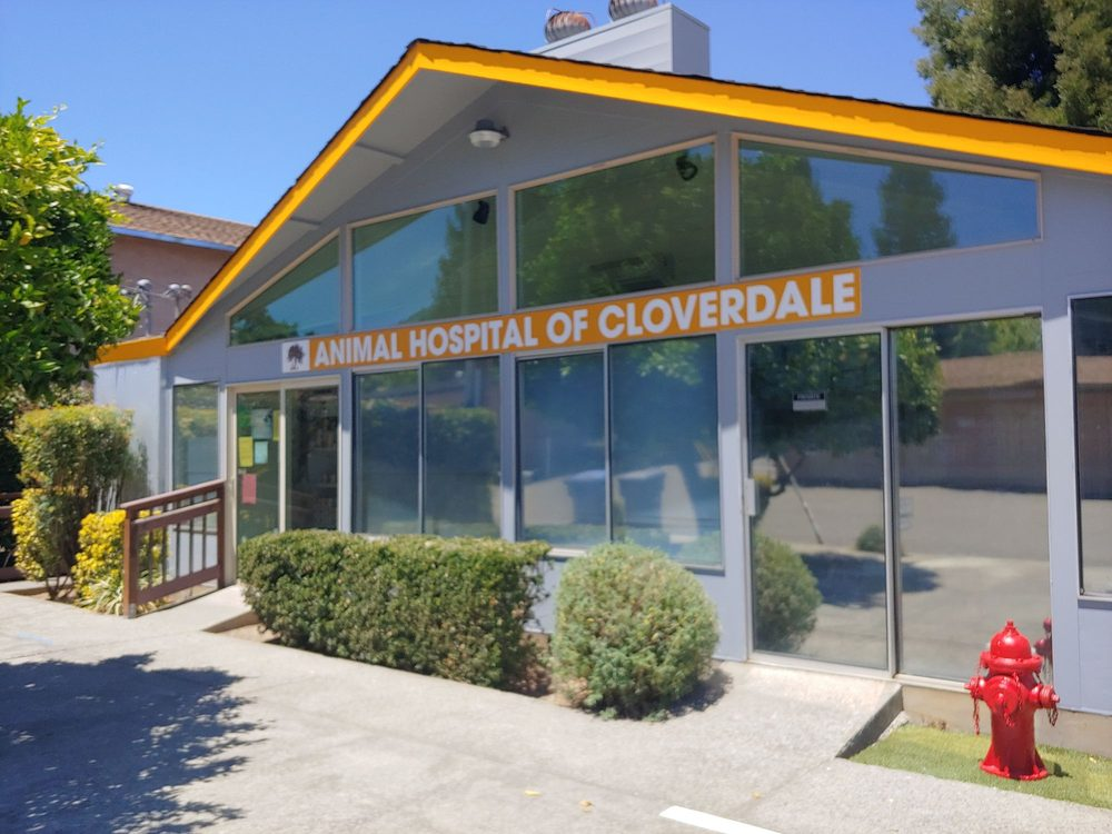 Animal Hospital of Cloverdale: 20 Industrial Dr, Cloverdale, CA