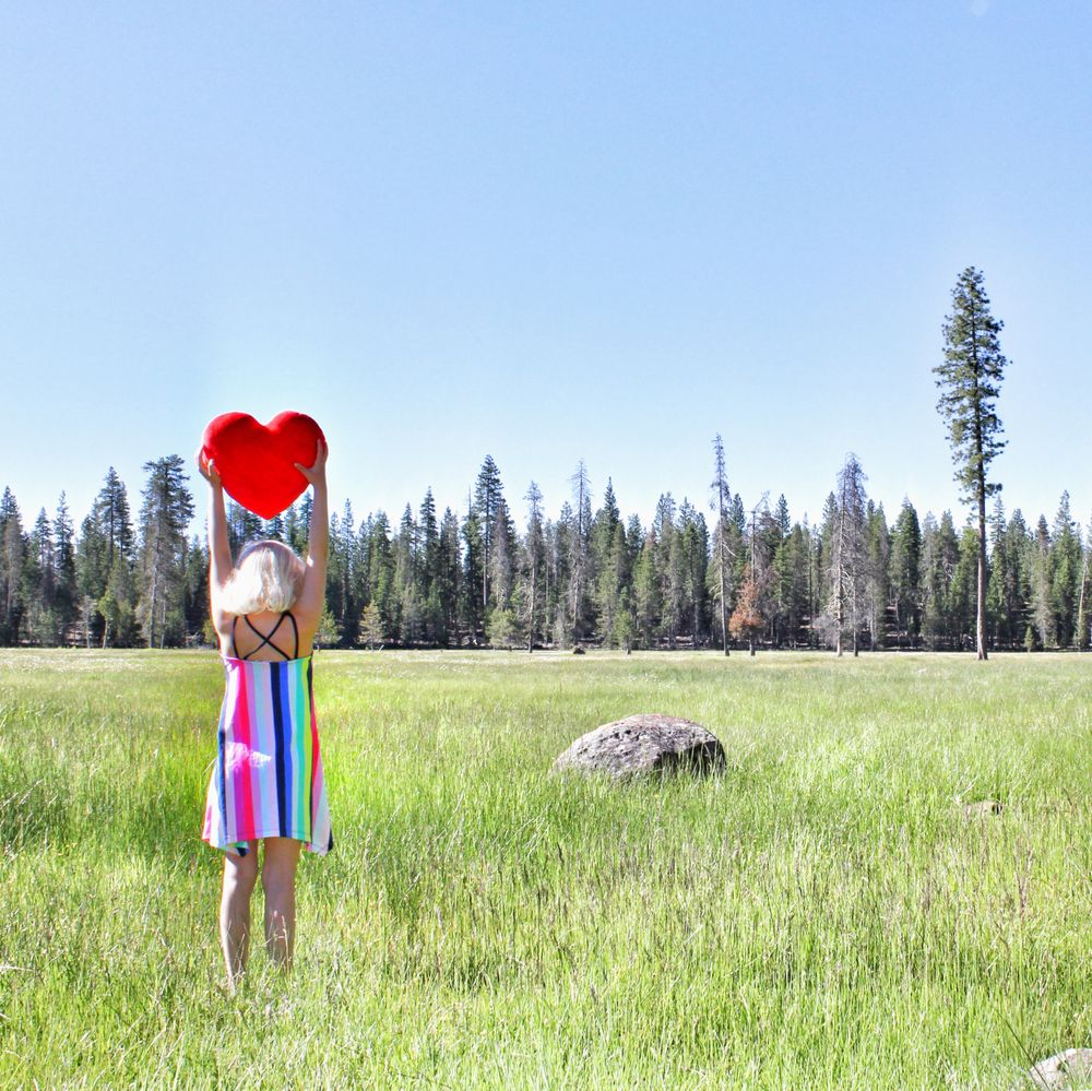 Lassen Meadows Ranch: 370 Forest Service Rd, Chester, CA
