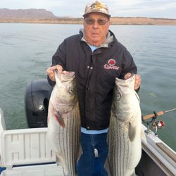 Fish lake mead boating henderson nv united states for Lake mead fishing guides