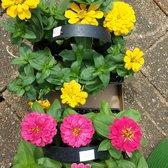 Photo Of Behlmann Nursery Garden Center Florissant Mo United States