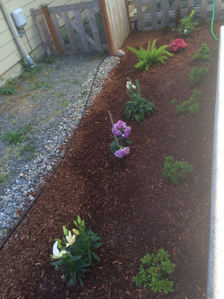 Photo Of Rickyu0027s Landscaping And Gardening Services   Seattle, WA, United  States. The