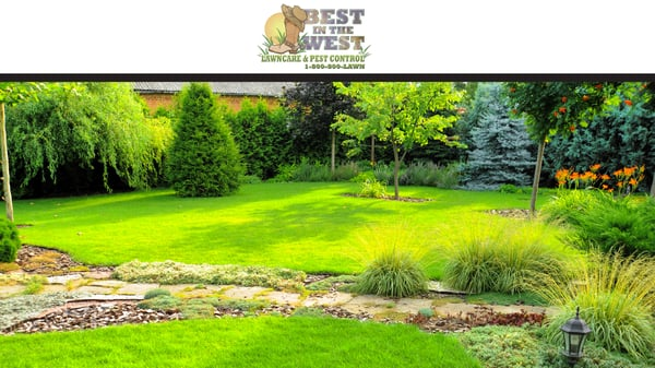 photo of best in the west lawn care pest control ogden ut - Ogden Lawn And Garden