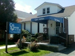 Cat Sense Feline Hospital and Boarding: 332 S Main St, Bel Air, MD