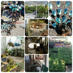 Photo Of Willow Gardens Nursery Clovis Ca United States